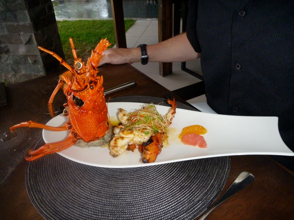 NAVO | LOBSTER OF THE DAY SPECIAL