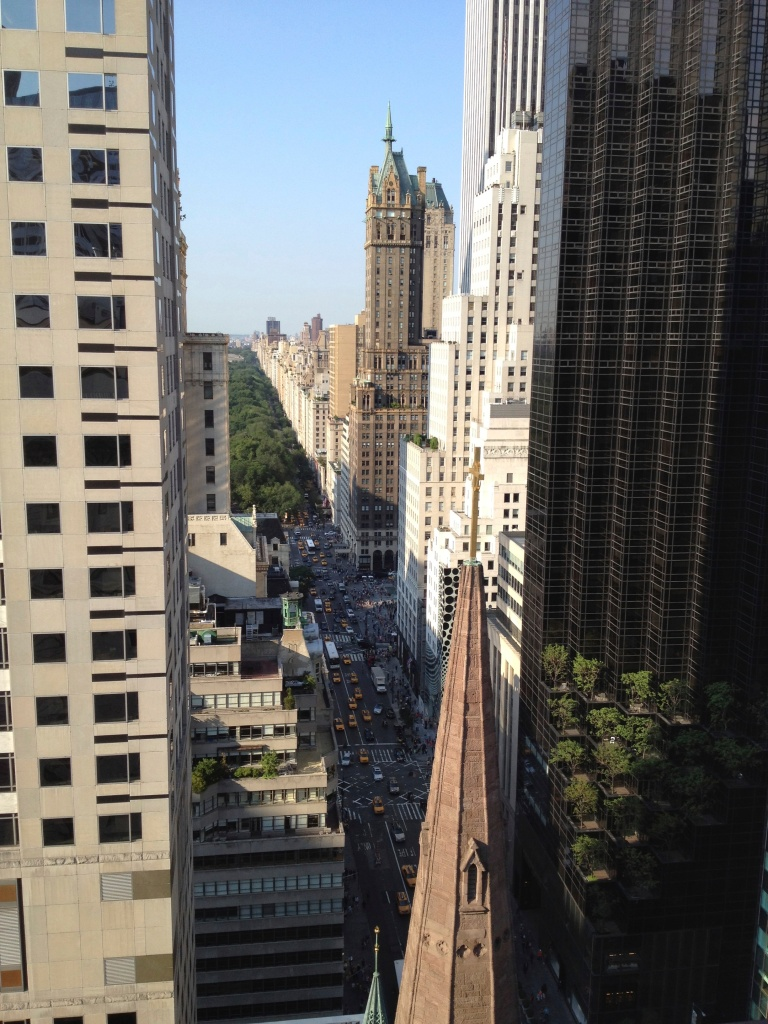 GLIMPSE OF CENTRAL PARK AND TAXIS ON FIFTH AVENUE | VIEW FROM SALON DE NING