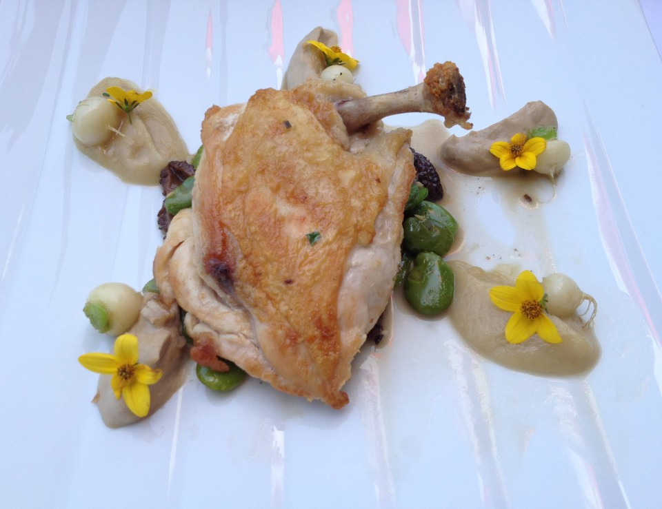 YOUNG CHICKEN - FAVA BEANS, MORELS, TURNIPS, FIG-MUSHROOM PUREE, GOLDEN BEETS | THE BLVD RESTAURANT