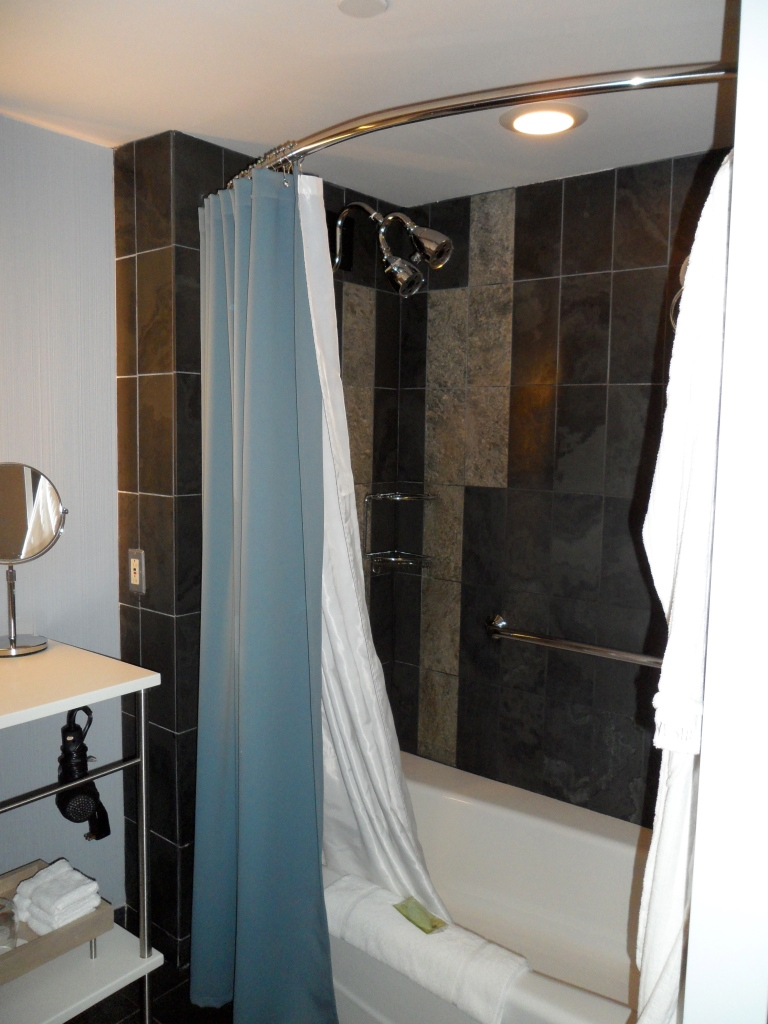 GRAND DELUXE GUEST BATHROOM | THERAPEUTIC SPA SHOWER