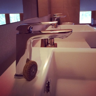 LUXE ENSUITE AND APELLES AMENITIES