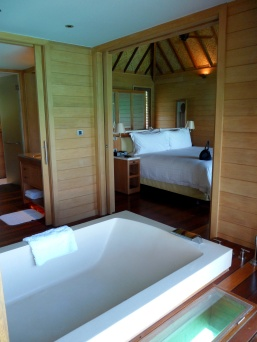 VIEW FROM THE OVERSIZED TUB