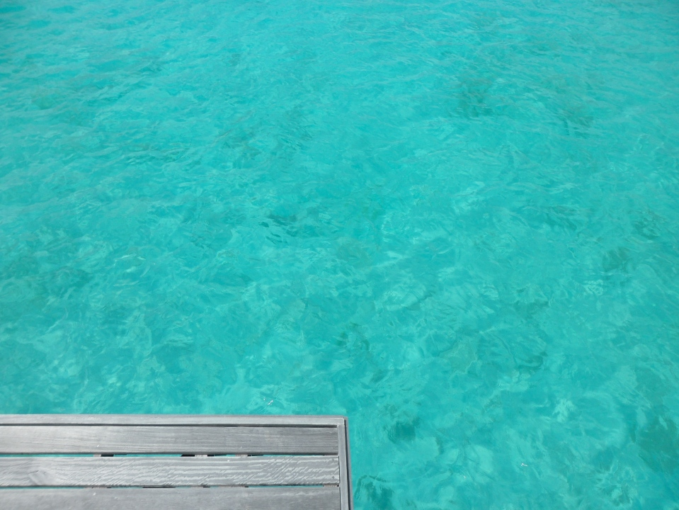 LAGOON SWIMMING FROM THE PRIVATE DECK