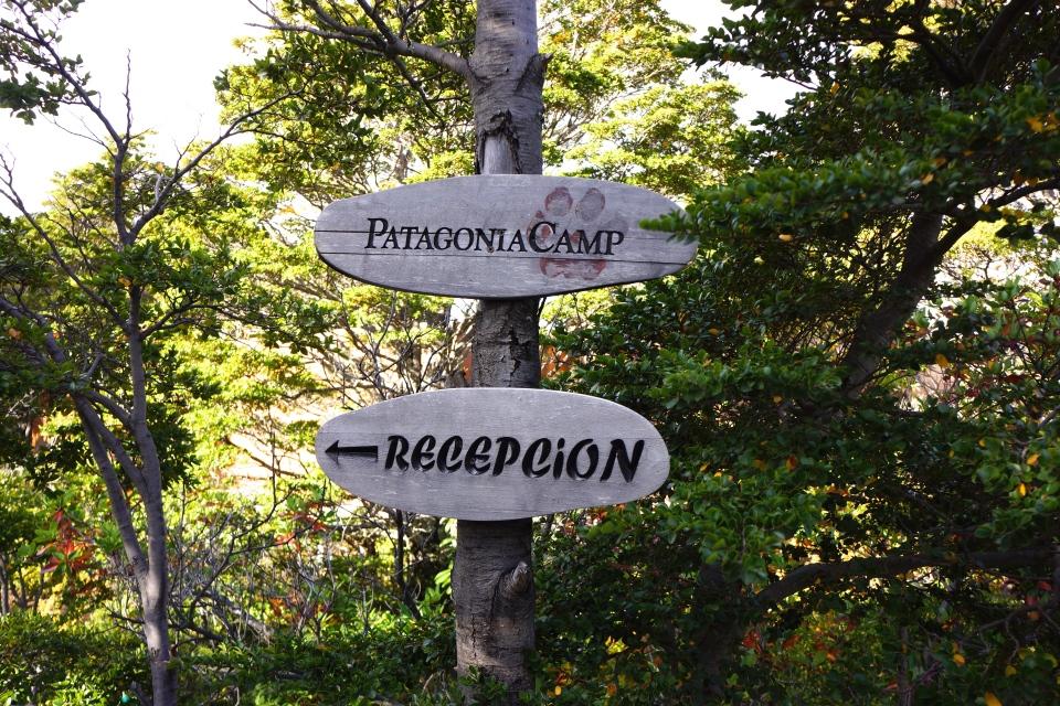 ARRIVAL AT PATAGONIA CAMP