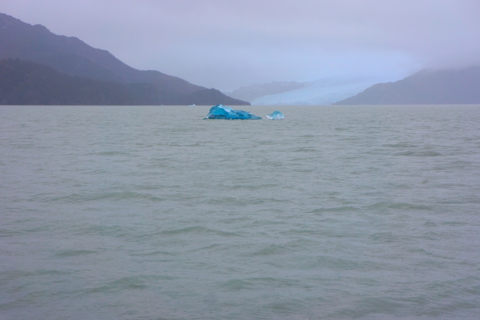 FLOATING ICEBERGS IN FRONT OF GLACIER GREY